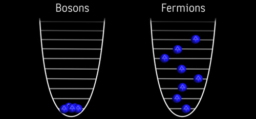 Bosons and Fermions