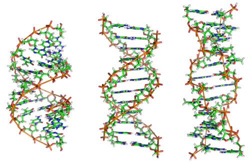 DNA Configurations