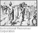 [Picture of a cotton plantation]