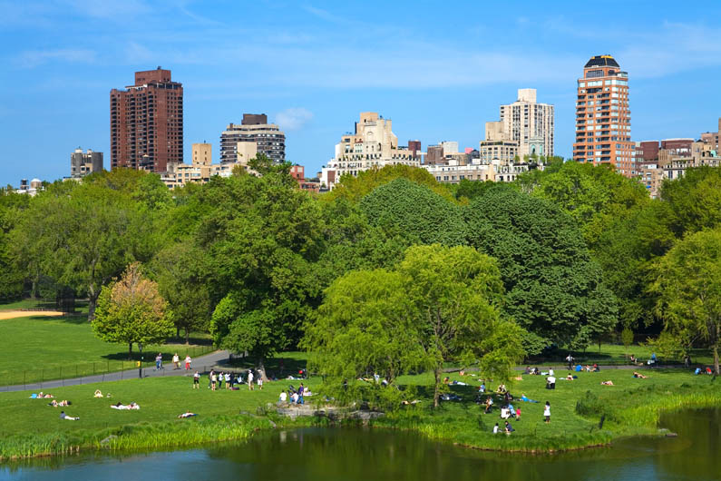Central Park (view of the Turtle Pond)