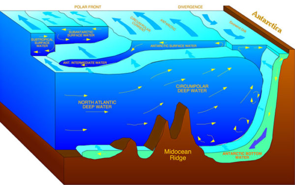Cold water masses